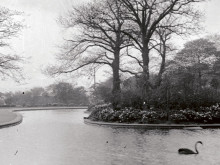 £50,000 restoration bid for park lake