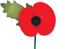 Your guide to Remembrance Day events
