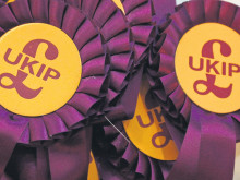 Now UKIP join the election battle ... and Greens battle for selection
