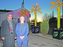 Popular trees look set for the chop