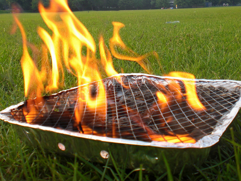 Council fining park fires and barbecues