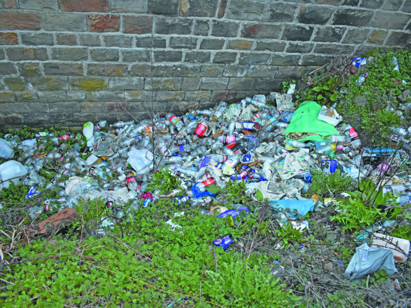 Court's litter let-off is a joke