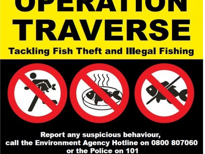 Crackdown on fish thefts
