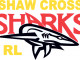 March: Sharks must set Division Two standard