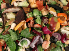 Labour deputy leader Sheard slams weekly food waste plans
