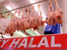 Non-stunned halal meat row rumbling on after FoI request 'error'