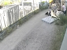 Bosses fined for fly-tipping