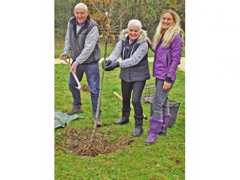 Jo's Oak and John's Orchard at the heart of Community Wood